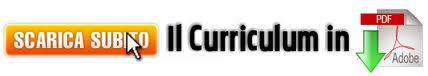 banner-curriculum-pdf